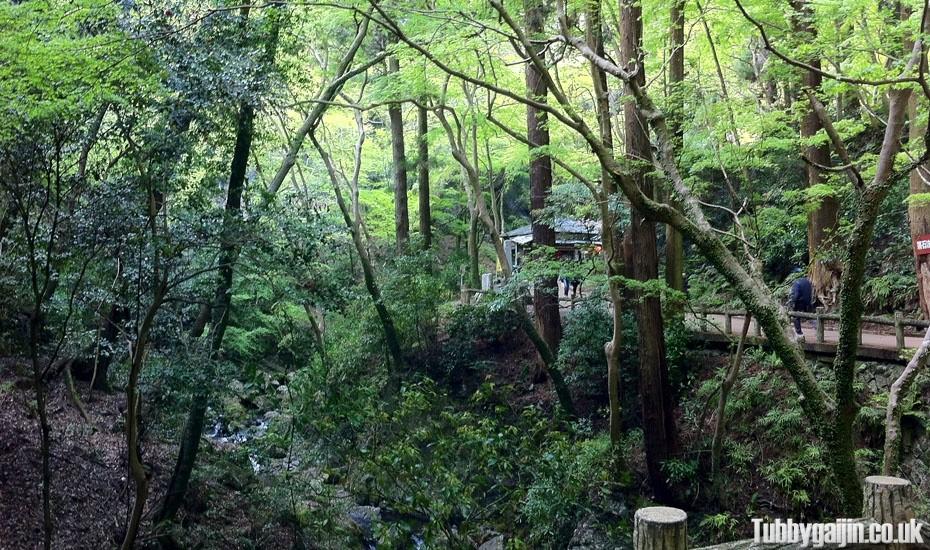 Hiking to Minoh waterfall
