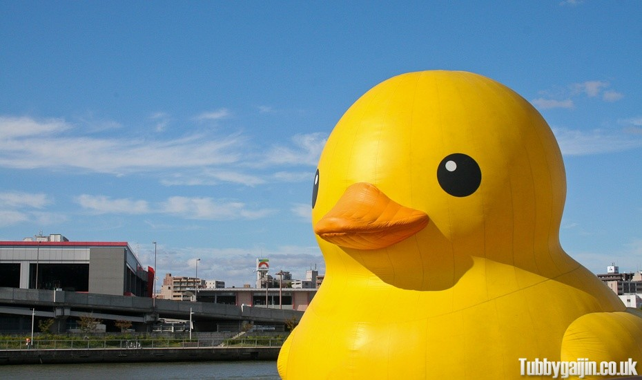 The giant duck returns to Osaka!