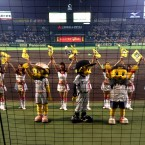 Hanshin Tigers advance to Japan Series!