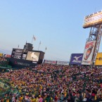 Welcome to Hanshin Tigers Week!