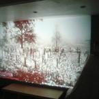 Basement Cinema: Update!