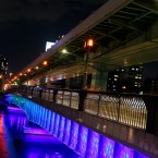 Nakanoshima night walk